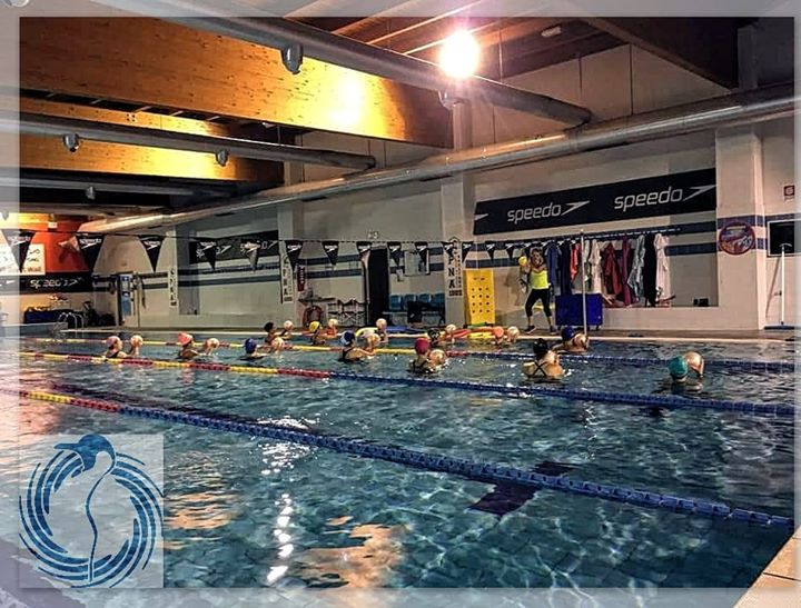 AquaFluiball Training #pinguinonuoto #acquafitnesspinguino . . ℹ086322000