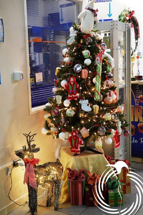 L'aria natalizia arriva anche alla #Pinguino! #Natale2018